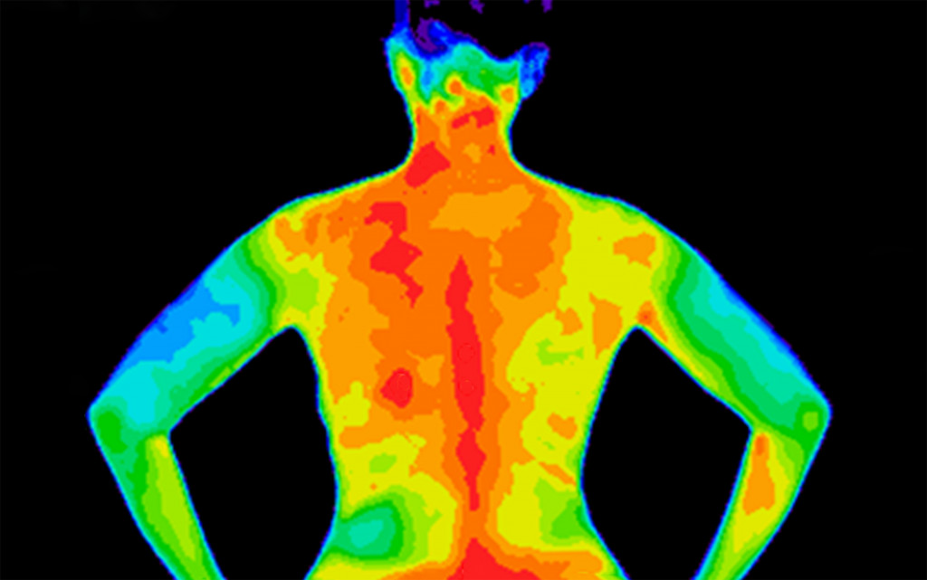 thermal scanner